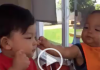 Watch Super Cute Video of Kid's Feeding Each Other Lunch