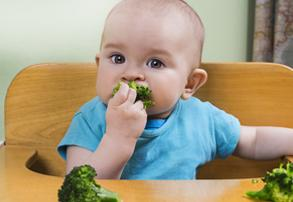 Baby-Led Weaning: What Is It and Should I be Doing It With My Baby?