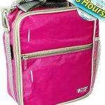 Fridge-To-Go Insulated Lunch Box Cooler