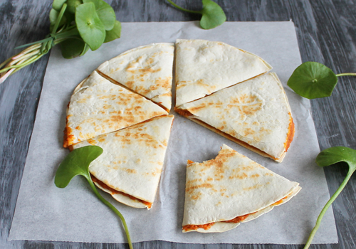 Pumpkin Quesadilla Recipe