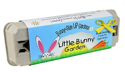 Kids Gardening Kit - Little Bunny Egg Carton Garden