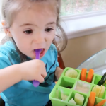 Nibble Trays for Picky Eating