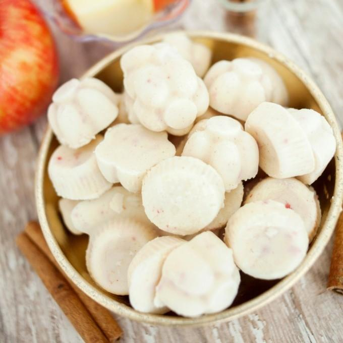 Apple Cinnamon Yogurt Bites