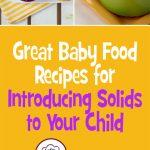Great Baby Food Recipes for Introducing Solids to Your Child