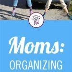 Moms, Organizing Your Car Has Never Been Easier!