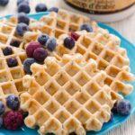 main-whole-wheat-waffles-recipe