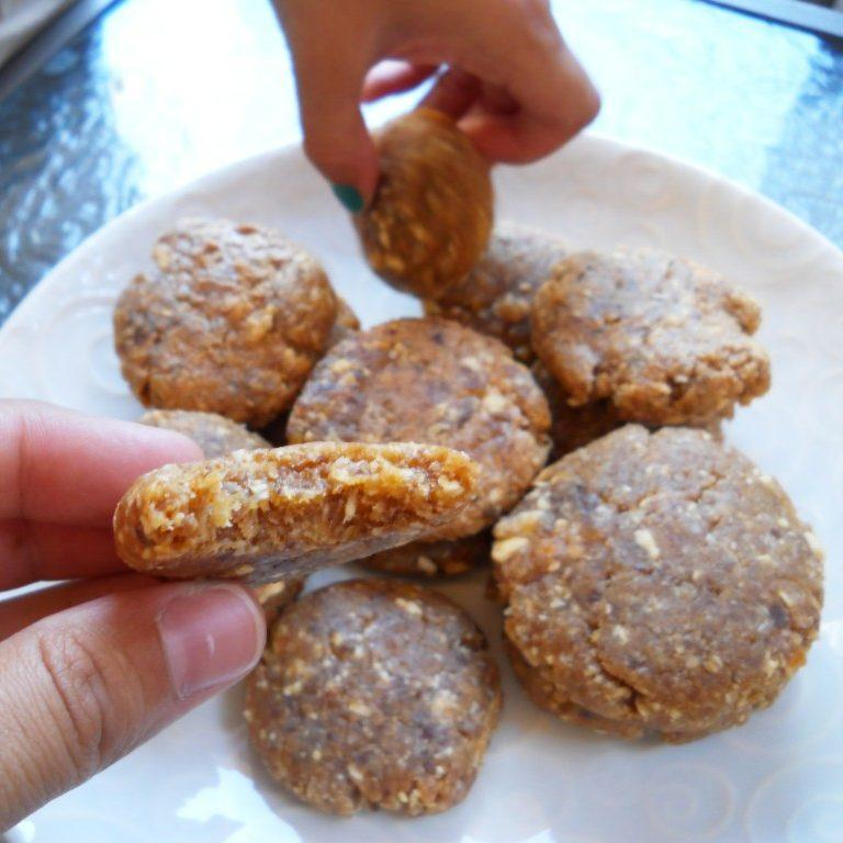 Apricot Coconut Dehydrator Cookies