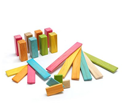 22 Piece Tegu Endeavor Magnetic Wooden Block Set