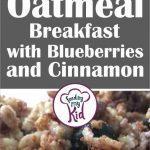 blueberry oatmeal short