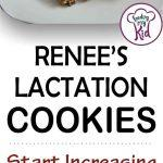 lactation cookies short