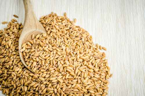 Farro comes from the grains of wheat, so be careful if you're following a gluten-free diet.