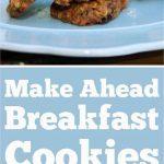 breakfast cookies short