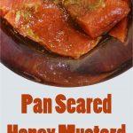 pan seared salmon short