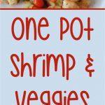 shrimp and veggies short