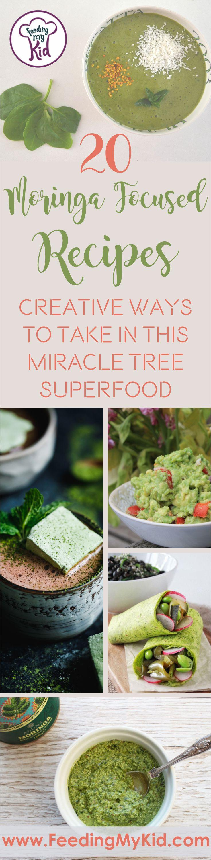 Moringa is a miracle tree superfood that is amazing for the body. Wanting to get more in your diet? These moringa recipes will do just that!